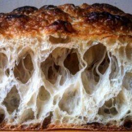 Slow Rise Pizza Bread - Crumbshot
